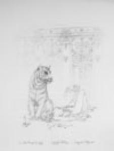 Pani Blumenstich i tygrys