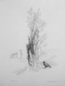 Ptak Śmierci (6)
