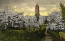 Gubin / Guben; Bismarckturm in der Baumblüte
