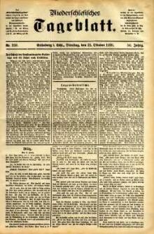 Niederschlesisches Tageblatt, no 250 (Grünberg i. Schl., Dienstag, den 25. Oktober 1898)