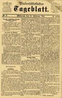 Niederschlesisches Tageblatt, no 47 (Mittwoch, den 25. Februar 1885)