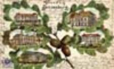 Słońsk / Sonnenburg, N.-M.; Gruss aus Sonnenburg; Pozdrowienia ze Słońska
