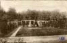 Zasieki / Forst (Lausitz); Wehrinsel, Partie im Rosenpark