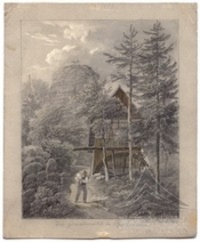 Młyn w lesie
