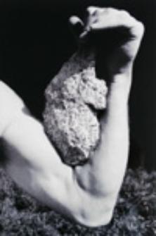 Obiekt nietrwały; Impermanent object