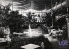 Zielona Góra; Wnętrze palmiarni w Parku Winnym, Kawiarnia-Klub