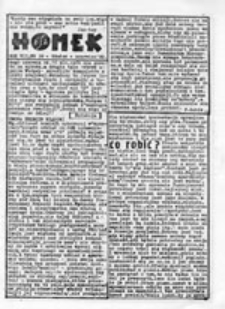 HOMEK: pismo Ruchu Alternatywnego: dodatek ulotny do nr 17 (listopad 1984)
