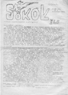 Sokół: Pismo Młodzieży Myślącej, nr 14 (29 września 1986 r.)