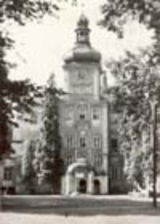 Iłowa k. Żagania; Pałac