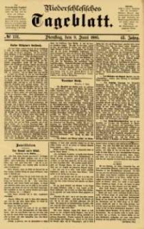 Niederschlesisches Tageblatt, no 131 (Dienstag, den 9. Juni 1885)