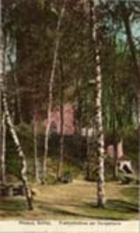 Przewóz / Priebus, Schles; Freilichtbühne am Hungerturm