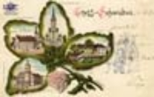 Świebodzin / Schwiebus; Gruss aus Schwiebus; Pozdrowienia ze Świebodzina