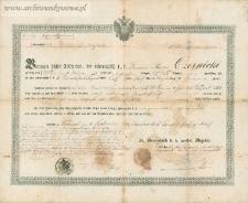 Marzin (Marcin) Czernicki (Czerniecki) - dokument zwolnienia ze służby wojskowej