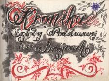 Kronika Szkoły Podstawowej w Brójcach - rok szkolny 1992/1993