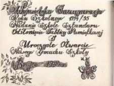 Kronika Szkoły Podstawowej w Brójcach - rok szkolny 1994/1995