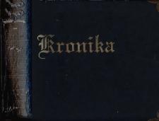 Kronika Szkoły Podstawowej w Brójcach - rok szkolny 2010/2011