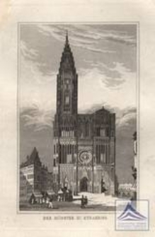 Der Münster zu Strasburg