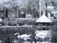 Zielona Góra; Park przy ul. Niepodległości